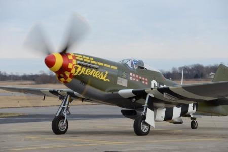 P 51 Mustang Survivors Mustangsmustangs Com